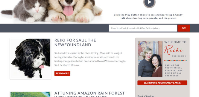 Reiki Fur Babies WordPress web design RKA ink